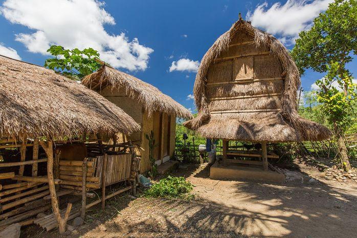 Rumah Adat Dusun Sade